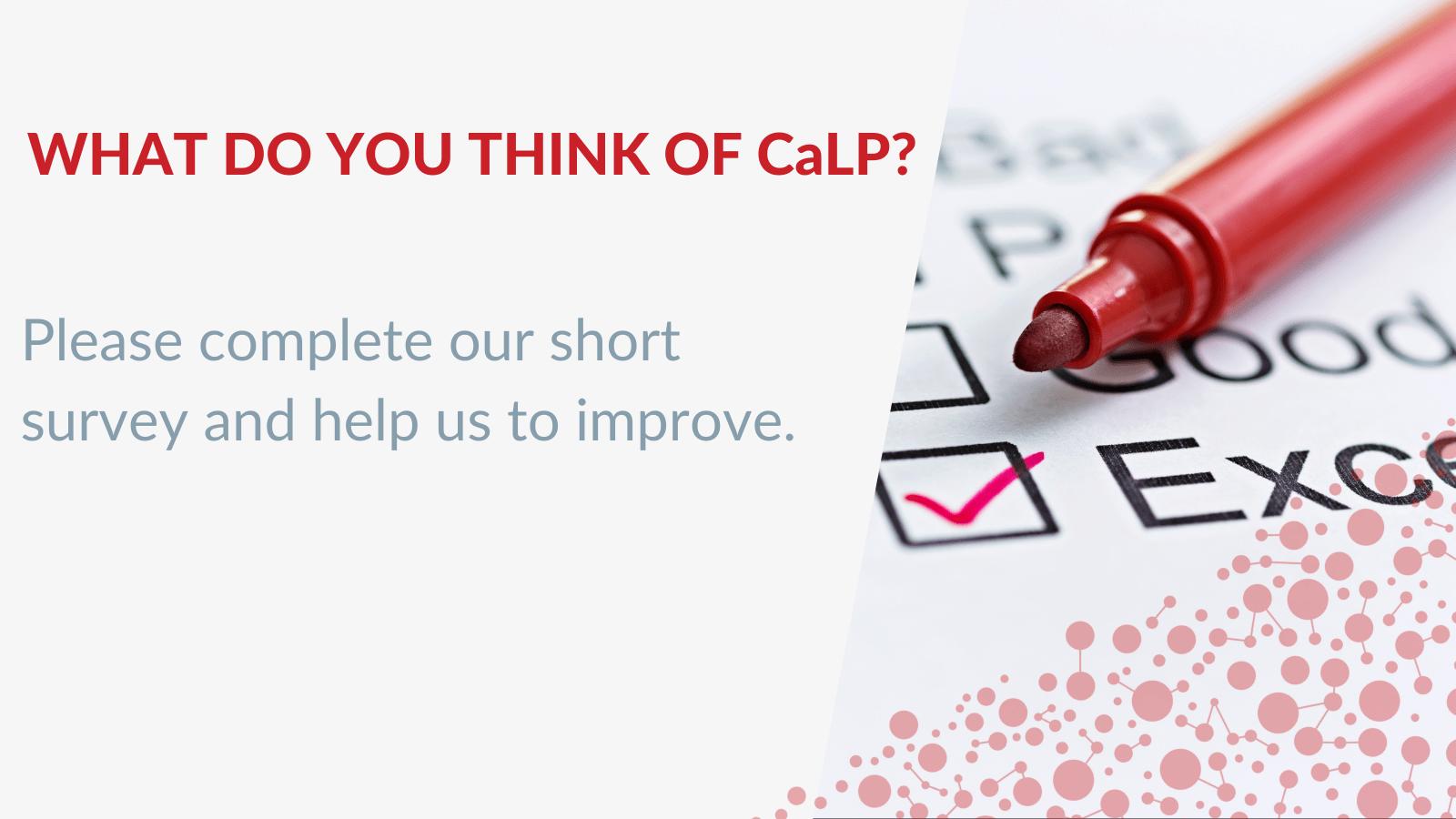 CaLP Perception survey 2021
